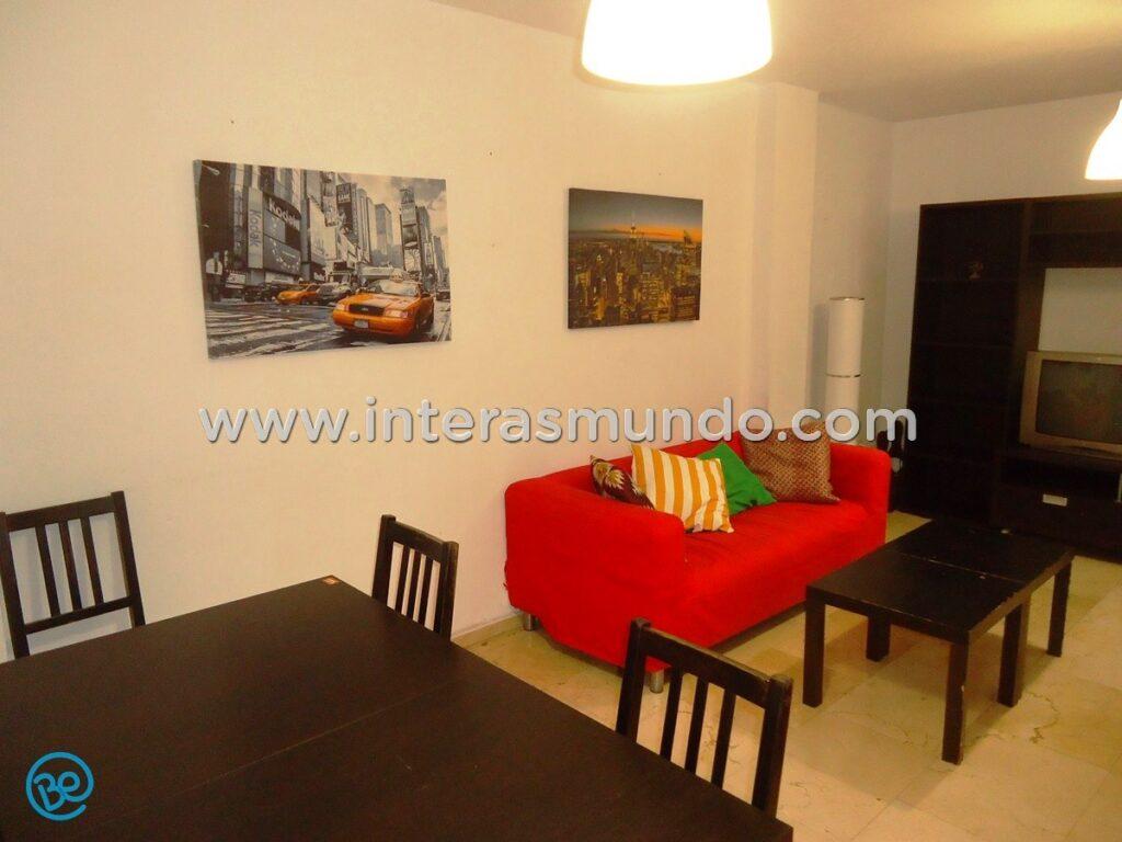 Apartamento compartido Erasmus